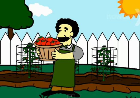 How to grow tomatoes in your garden | Recurso educativo 47704