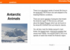 Antarctic animals | Recurso educativo 54262