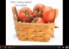 Video: Who's hiding? | Recurso educativo 60468