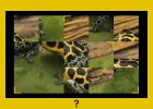 National Geographic's Jigsaw | Recurso educativo 65442