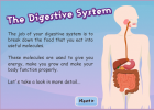 Digestive System - The Children's University of Manchester | Recurso educativo 686059